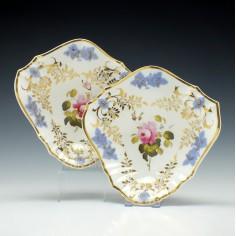 Pair HR Daniel Porcelain Botanical Dishes c1800