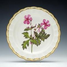 Derby Botanical Porcelain Plate c1795