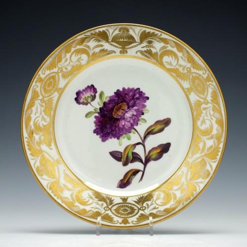 Derby Botanical Porcelain Plate c1810