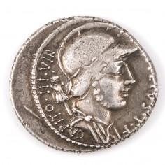 Roman P Fonteius P.F. Capito Silver Denarius 55BC