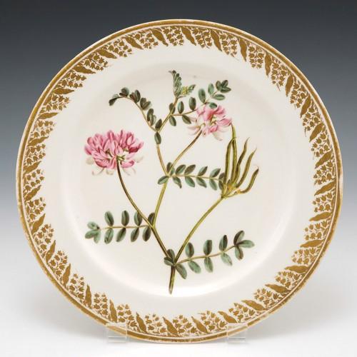 Derby Botanical Porcelain Plate Pattern 115 Coronilla Varia c1795