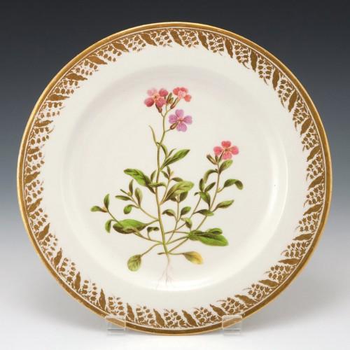 "Derby Porcelain Botanical Plate Pattern 115 ""Mediterranean Stock"" c1795"