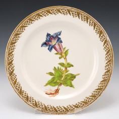 "A Derby Porcelain Botanical Plate Pattern 115 ""Large Flowered Gentian"" c1795"