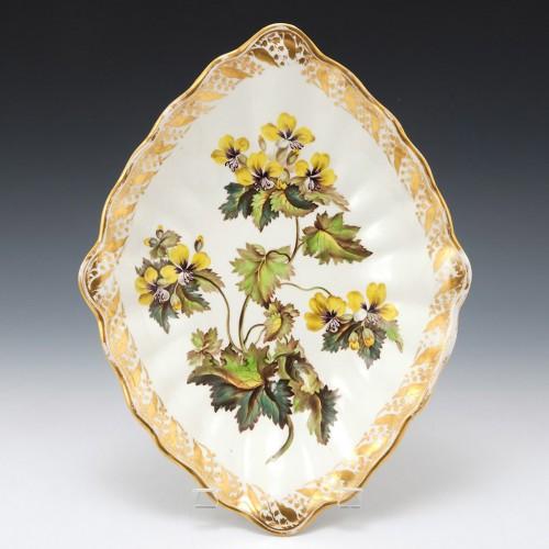 """A Derby Porcelain Botanical Dish Pattern 115 """"Golden Flowered Henbane"""" c1795"""