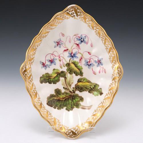 "A  Derby Porcelain Botanical Dish ""Borage' c1795"
