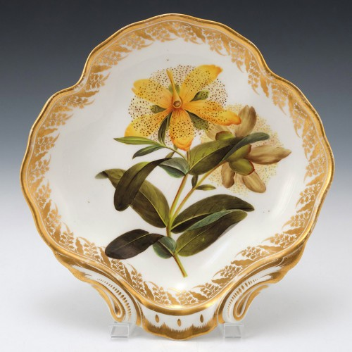 "A Derby Porcelain Botanical Dish Pattern 115 ""Large Flowered St Johns Wort"" c1795"