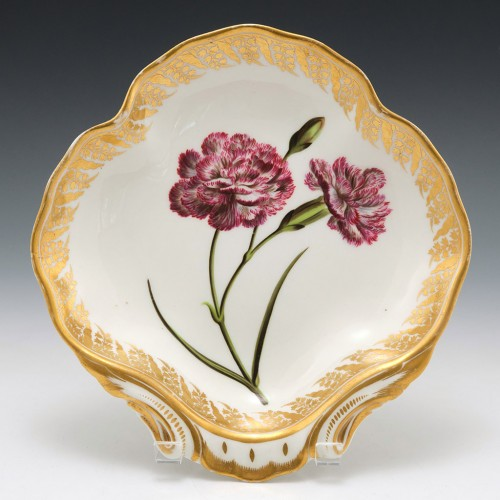 A Rare Derby Porcelain Botanical Dish of Shell form Pattern 115  c1795