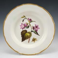 A Derby Porcelain Botanical Soup Plate Pattern 197 'Nettle Leav'd Bell Flower' c 1795