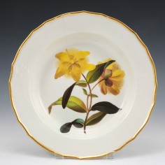 A Derby Porcelain Botanical Soup Plate Pattern 197 'St John's Wort' c 1795