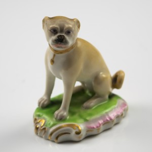 Derby Figure of a Pug c1800