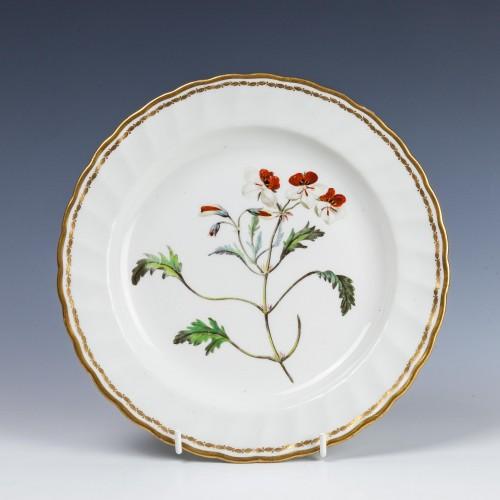 Derby Porcelain Botanical Dessert Plate c1795