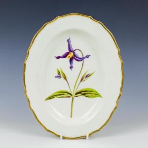 Derby Porcelain Pattern 197 Botanical Dish c1795