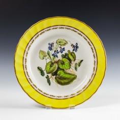 Derby Porcelain Botanical Dessert Plate c1790