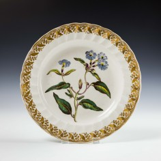 Derby Porcelain Botanical Dessert Plate c1795 Was £290