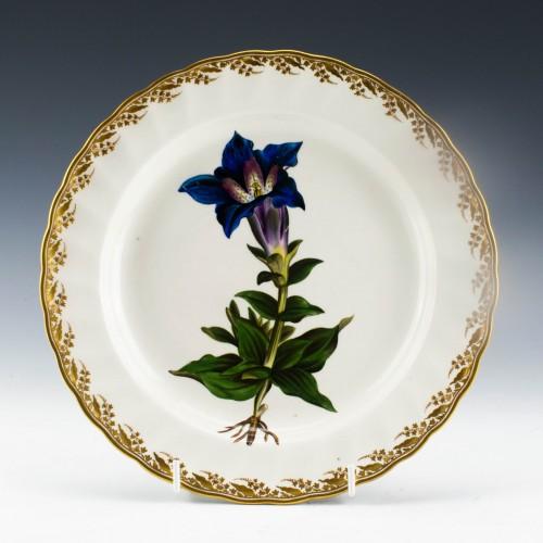 Quaker Pegg Derby Porcelain Botanical Plate Pattern 115 c1798