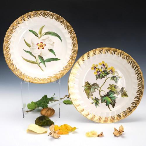 Pair of Derby Botanical Porcelain Plates Pattern 115 c1795