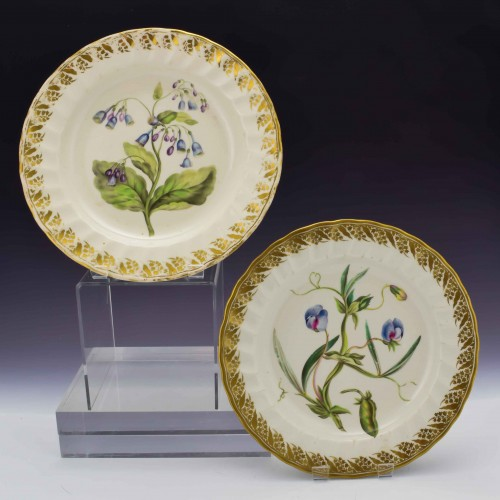 Pair of Derby Botanical Porcelain Plates Pattern 115 c1795