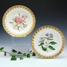 Pair of Derby Porcelain Botanical Plates c1795