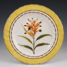 A Derby Porcelain Botanical Plate Broad Billed Heliconia c1800