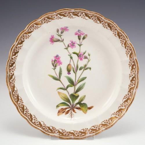 A Derby Duesbury and Kean Porcelain Botanical Plate c1795